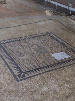 Opgravingen van Castelleone di Suasa
